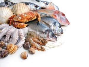 Fresh`Seafood--7.31.15