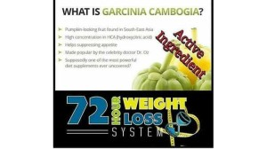 72-Hour Weight Loss Flyer with Garcinia Cambogia Info -- 4.26.17